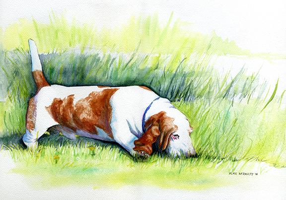 sundance watercolor